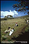 Christmas 1990_TANZANIA_climbing KILIMANJARO in 5 days_unforgettable_what an experience, a real adventure